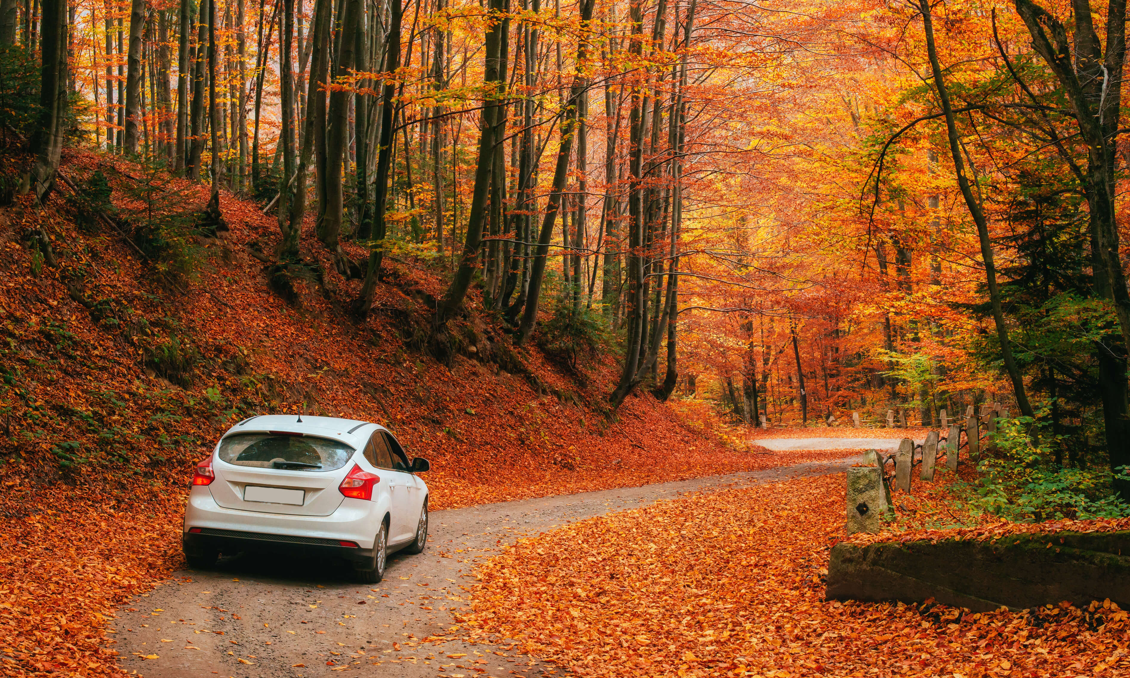 Preparing your vehicle for Autumn / Fall Weather